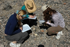 Field Studies in Natural History